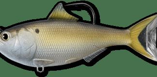 fishing, lures, saltwater, live target, swimbait