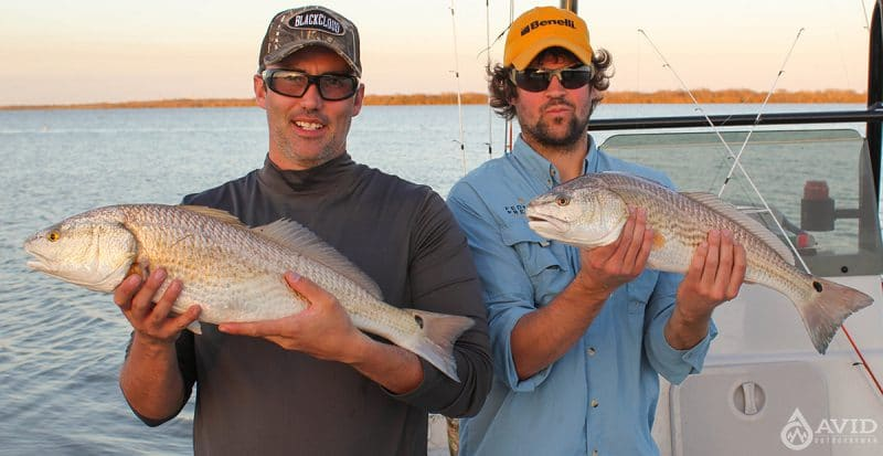 Chasing reds top 6 places for redfish for Fish camp hilton head