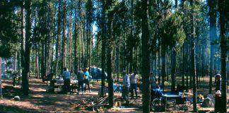 camping, camping skills, survival