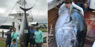 fishing, bluefin tuna, big catch, fish, saltwater, kaleb richardson