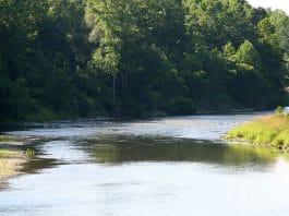 illegal fishing, genesee river NY, salmon, fishing