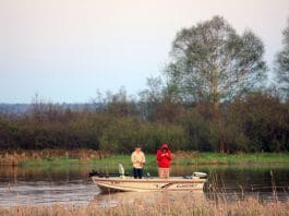 brown trout, fishing tips