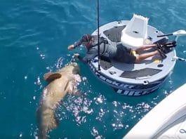 ultraskiff, boating, fishing, watercraft
