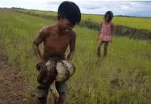 snake, fishing, cambodia