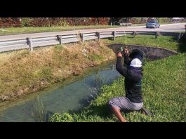 ditch fishing